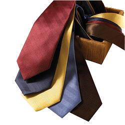 Edwards Herringbone Polyester Tie